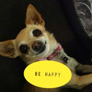 adoptee be happy